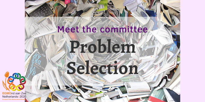 Meet the committee: problem selection